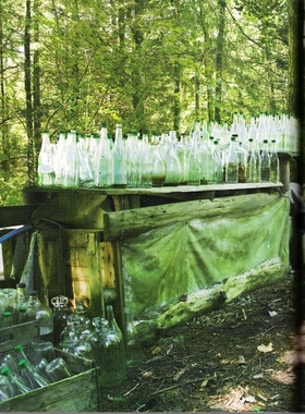 Empty_bottles_in_woods_lunar_xmas_1