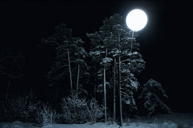 Moonlit_night_2