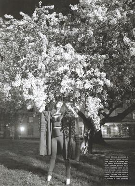 Night_blooming_4